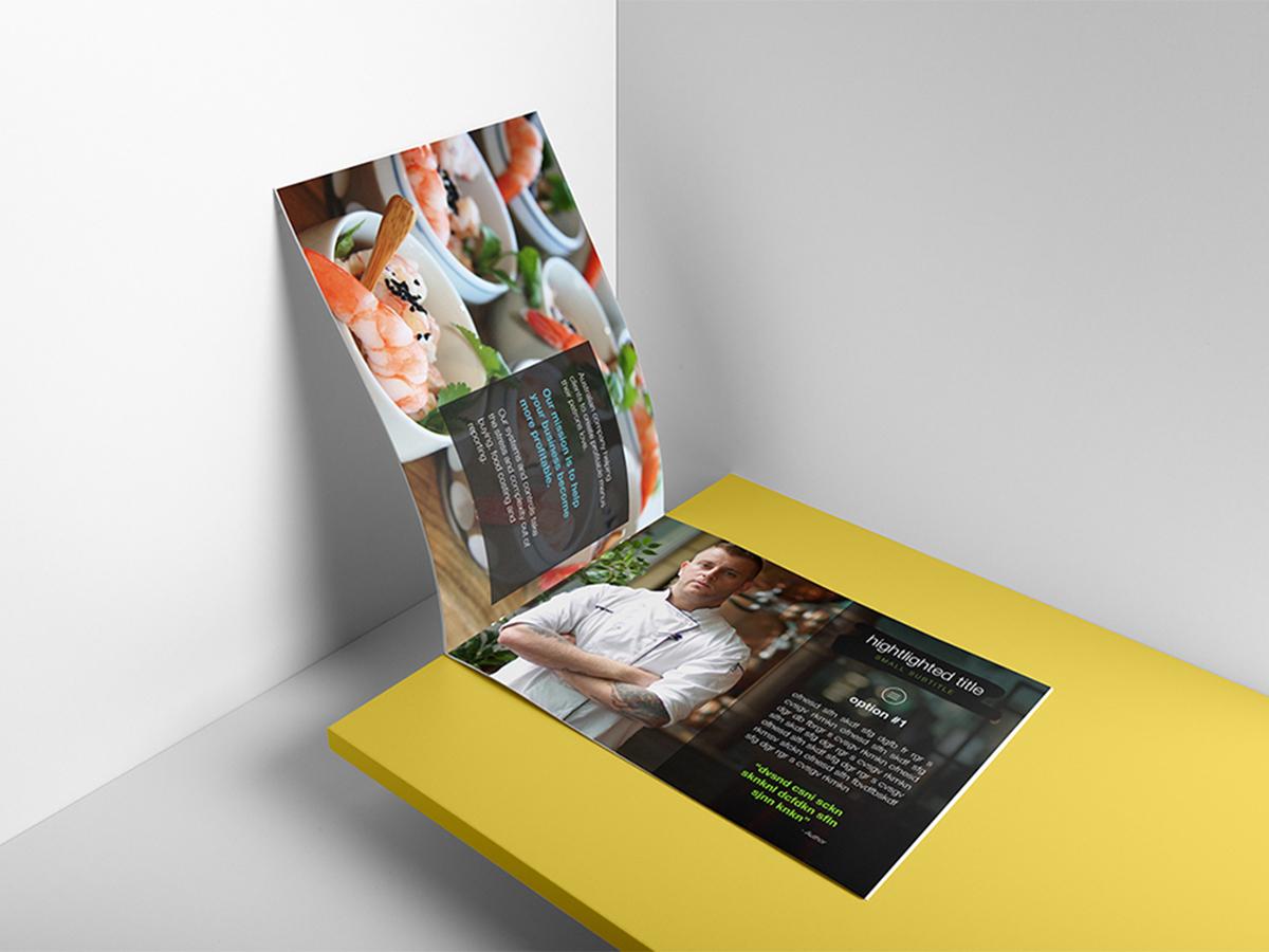 mlf-brochure